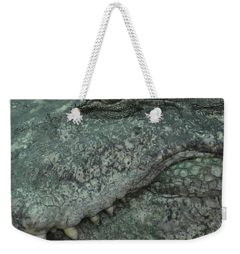 Michelle Meenawong Weekender Tote Bag featuring the photograph Croc by Michelle Meenawong