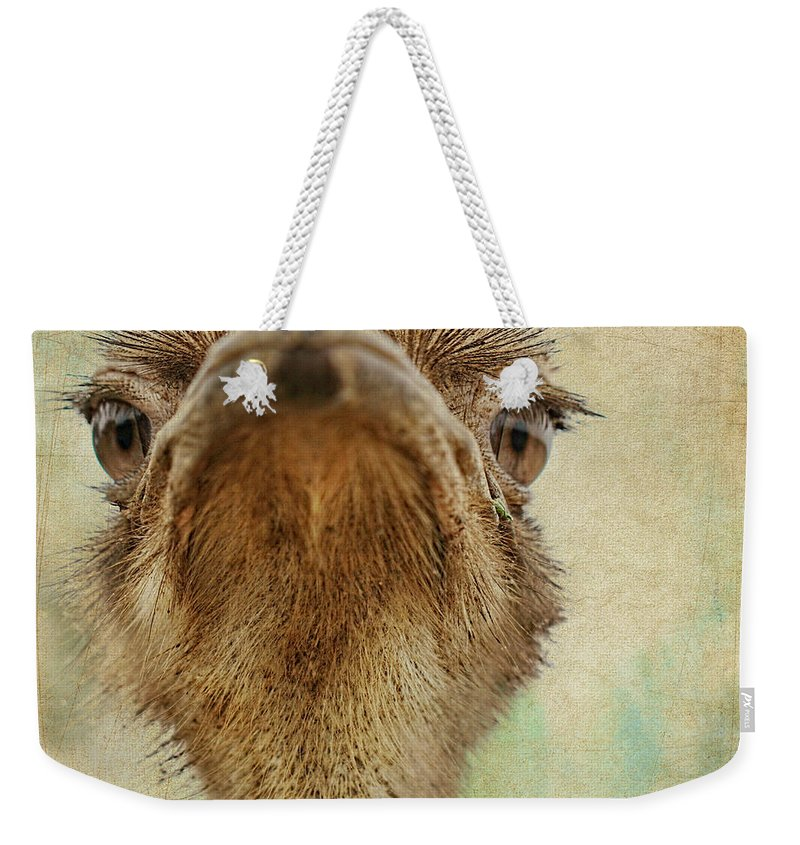 Ostrich Weekender Tote Bag featuring the photograph Ostrich Closeup by Terry Fleckney