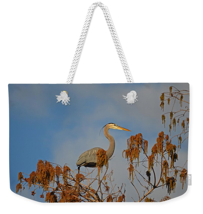 Great Blue Heron Weekender Tote Bag featuring the photograph 7- Great Blue Heron by Joseph Keane