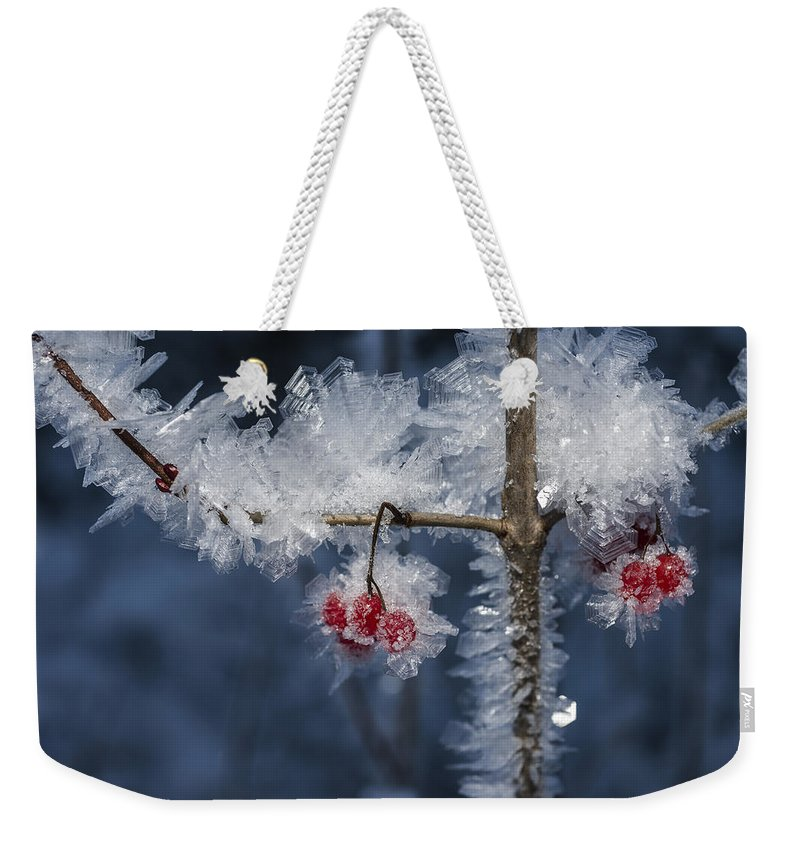 Ice Weekender Tote Bag featuring the photograph Absolute Zero by Ted Raynor