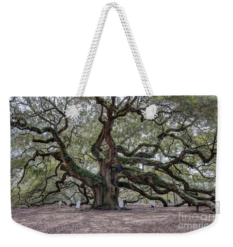 Angel Oak Tree Weekender Tote Bag featuring the photograph Angel Tree by Dale Powell