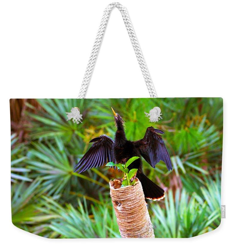 Anhinga Weekender Tote Bags