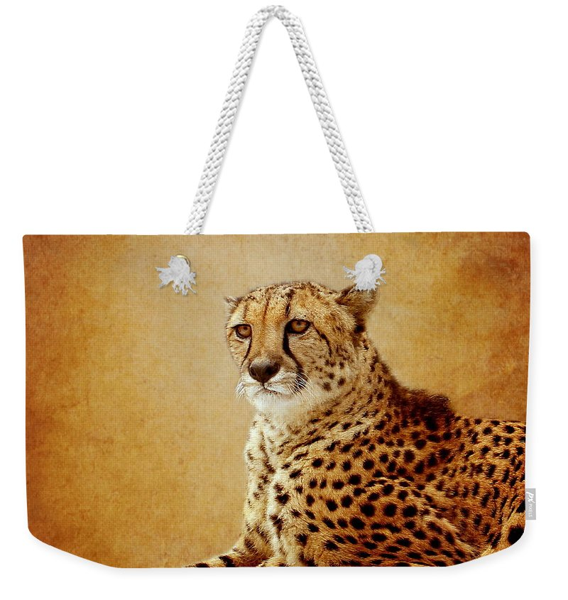 Cheetah Weekender Tote Bag featuring the photograph Animal Portrait by Heike Hultsch