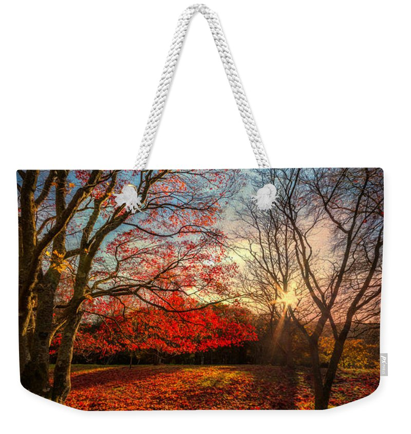 Acer Weekender Tote Bag featuring the photograph Autumn Shadows by Adrian Evans