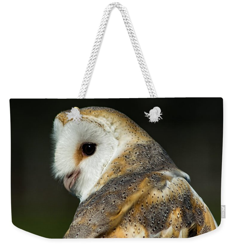 Birds Weekender Tote Bag featuring the photograph Barn Owl by Gabrielle Harrison