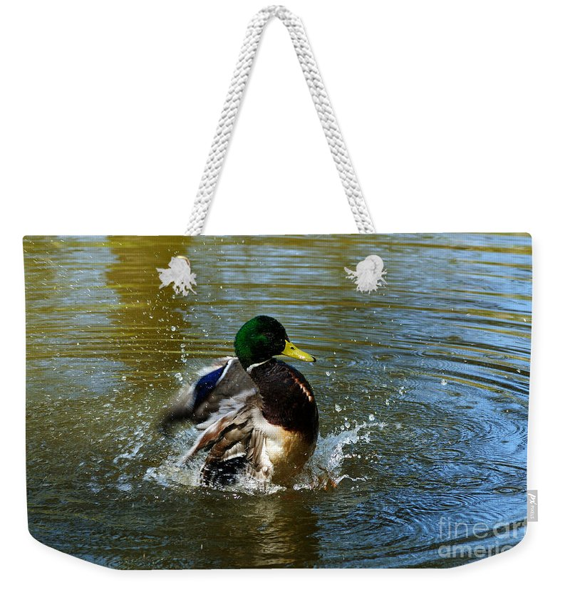 Mallard Weekender Tote Bag featuring the photograph Bath Time by Vivian Christopher