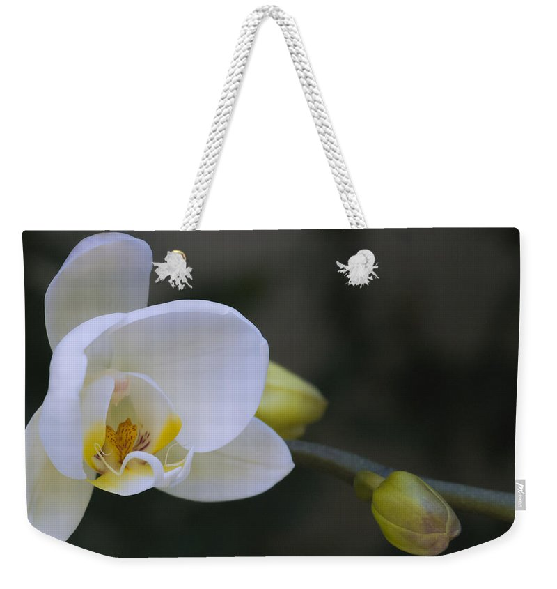 Beautiful Weekender Tote Bag featuring the photograph Beautiful by Dennis Reagan