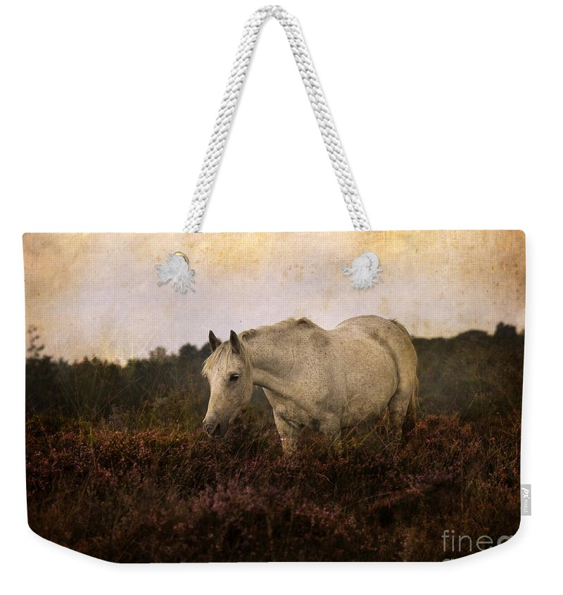 Pony Weekender Tote Bag featuring the photograph Bed Of Heather by Angel Ciesniarska