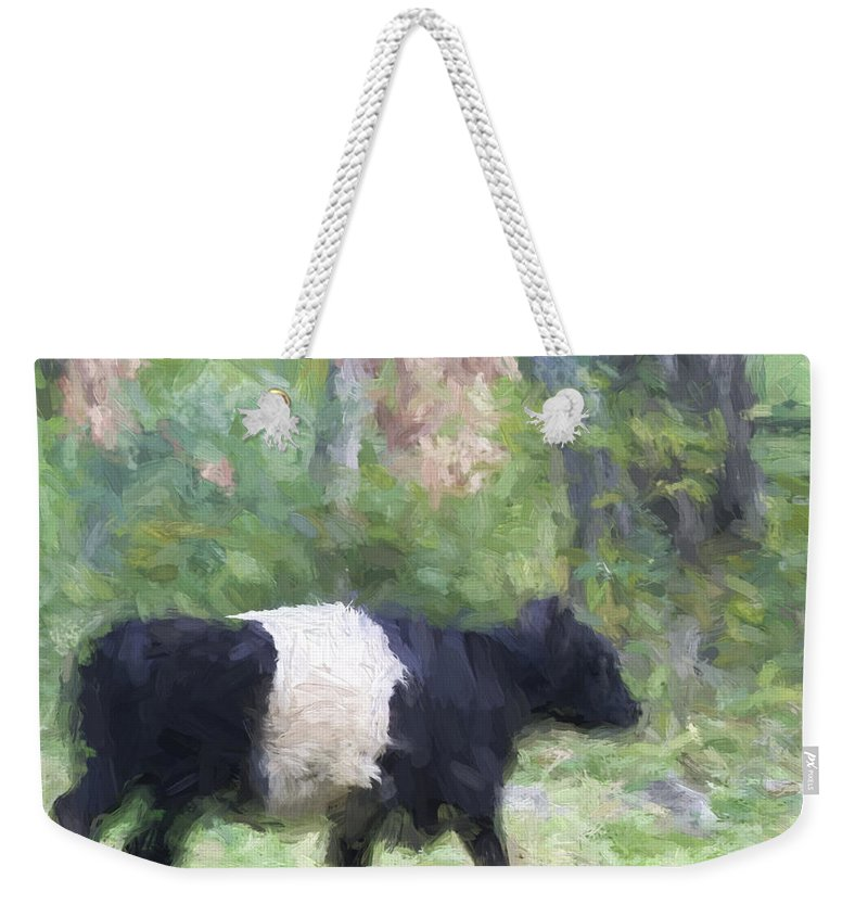 Belted Weekender Tote Bag featuring the photograph Belted Galloway Cow Painterly Effect by Carol Leigh