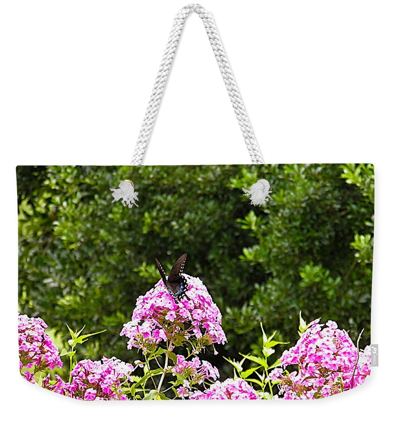 Black Weekender Tote Bag featuring the photograph Black Butterfly by Nick Kirby