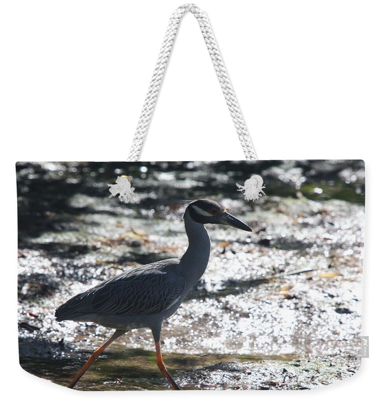 Night-heron Weekender Tote Bag featuring the photograph Black-crowned Night-heron by Christiane Schulze Art And Photography