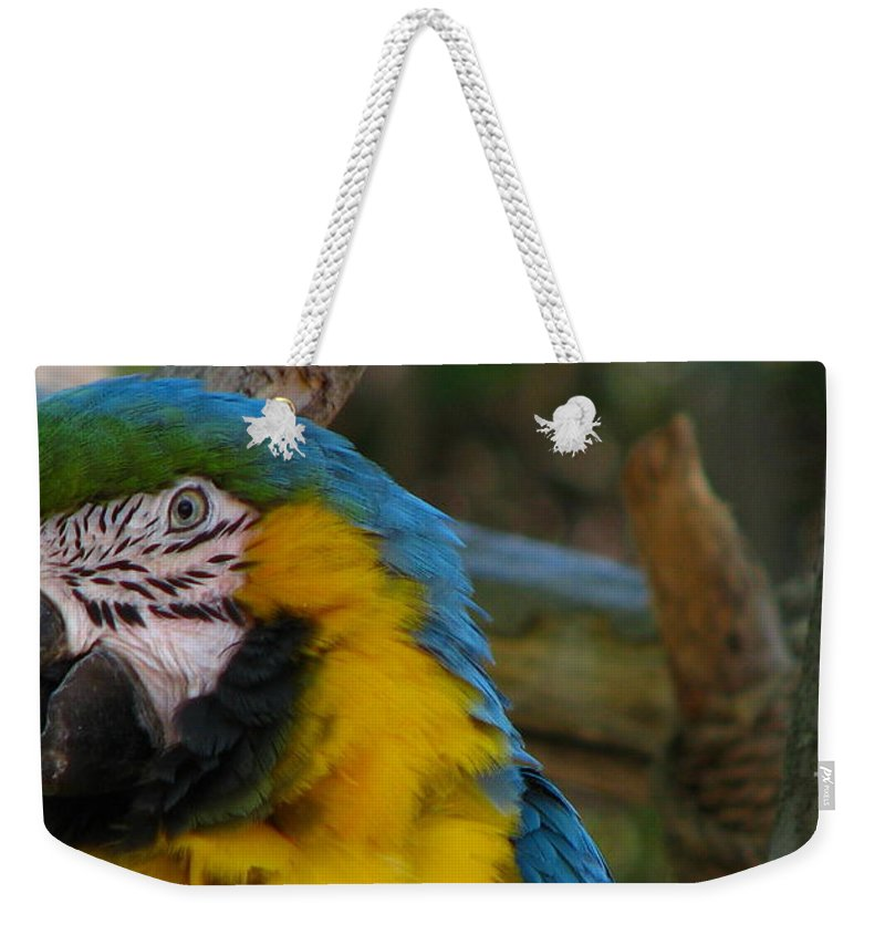 Patzer Weekender Tote Bag featuring the photograph Blue And Gold by Greg Patzer