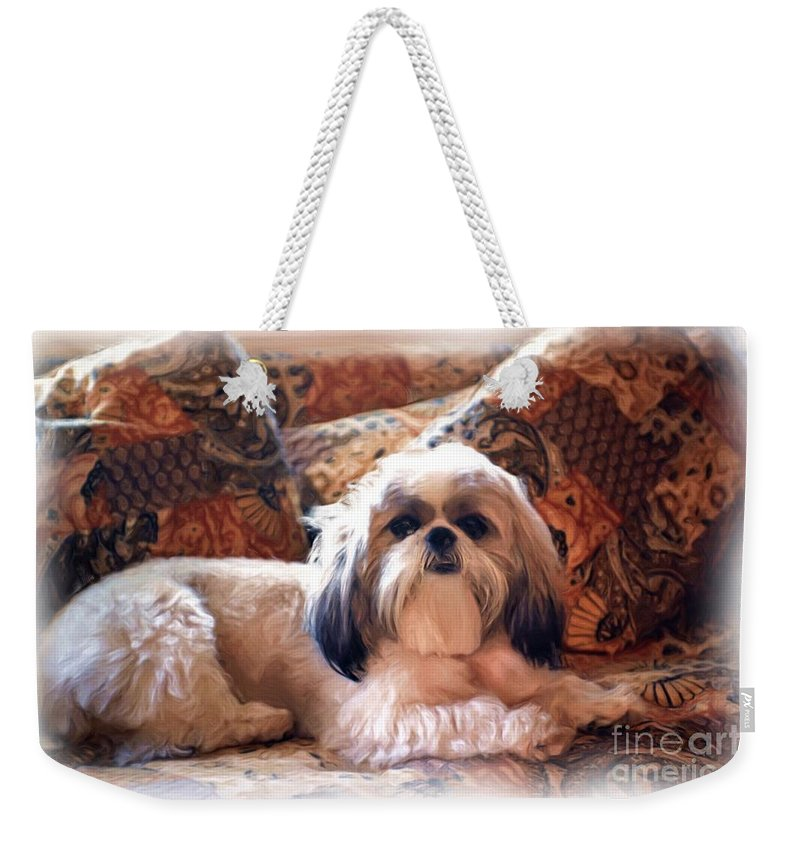 Digital Painting Weekender Tote Bag featuring the photograph Buddy by Allen Beatty