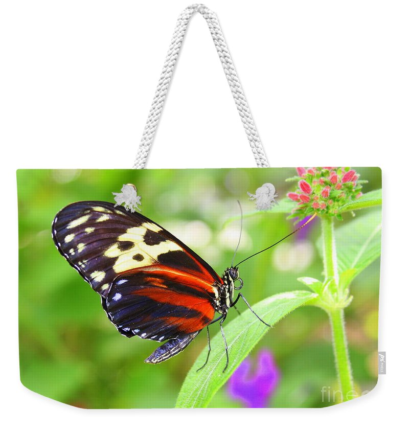 Butterfly Weekender Tote Bag featuring the photograph Butterfly On Bush by Dora Sofia Caputo Photographic Design and Fine Art