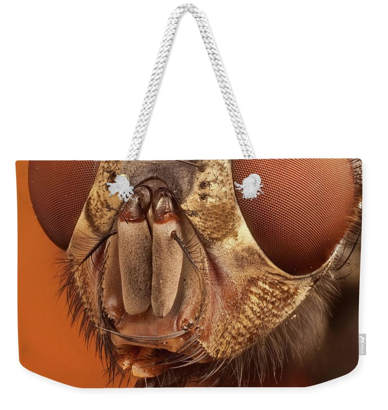 Focus Stacking Weekender Tote Bag featuring the photograph Calliphora Vicina 61 by Javier Torrent - Vwpics