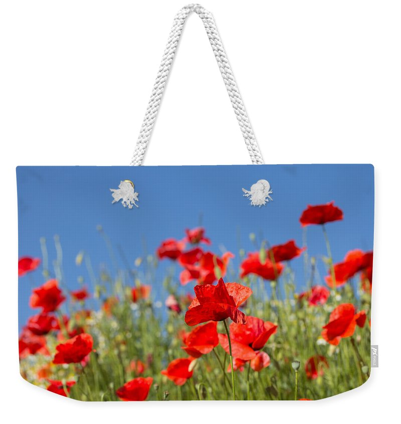 Poppy Weekender Tote Bag featuring the photograph Common Poppy Flowers by Jaroslav Frank
