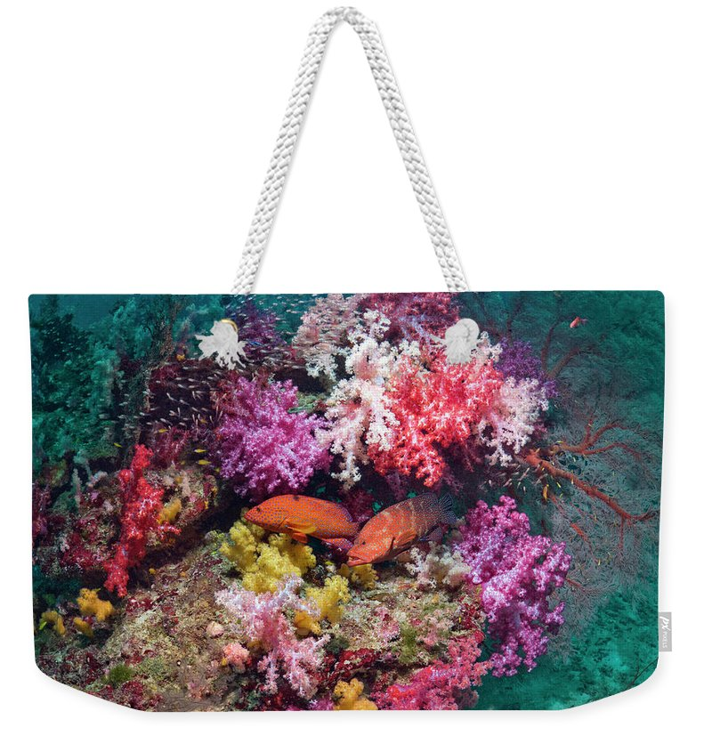 Tranquility Weekender Tote Bag featuring the photograph Coral Reef Scenery by Georgette Douwma
