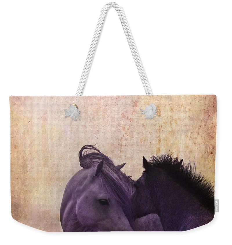 Horse Weekender Tote Bag featuring the photograph Cuddle Me by Angel Tarantella
