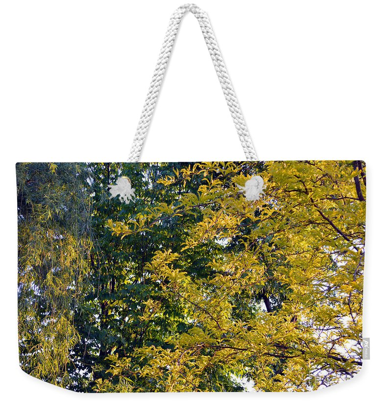 Sunlight Weekender Tote Bag featuring the photograph Dawn by Alys Caviness-Gober