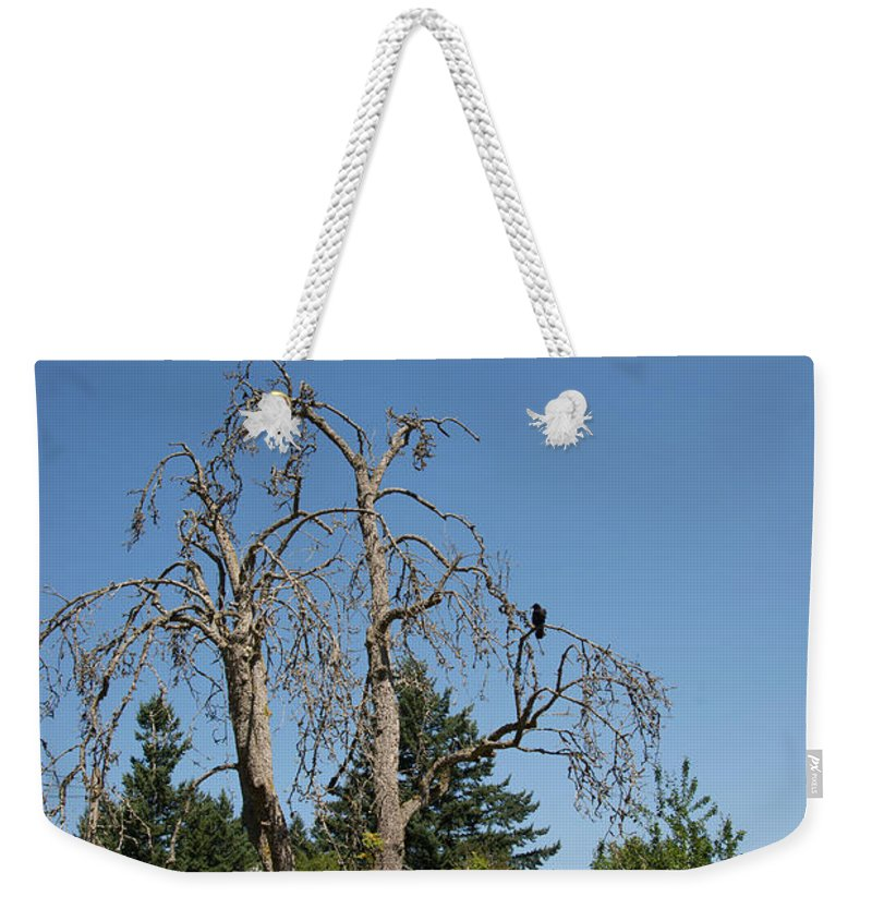 Animals Weekender Tote Bag featuring the digital art Dead Tree With Crow by Carol Ailles