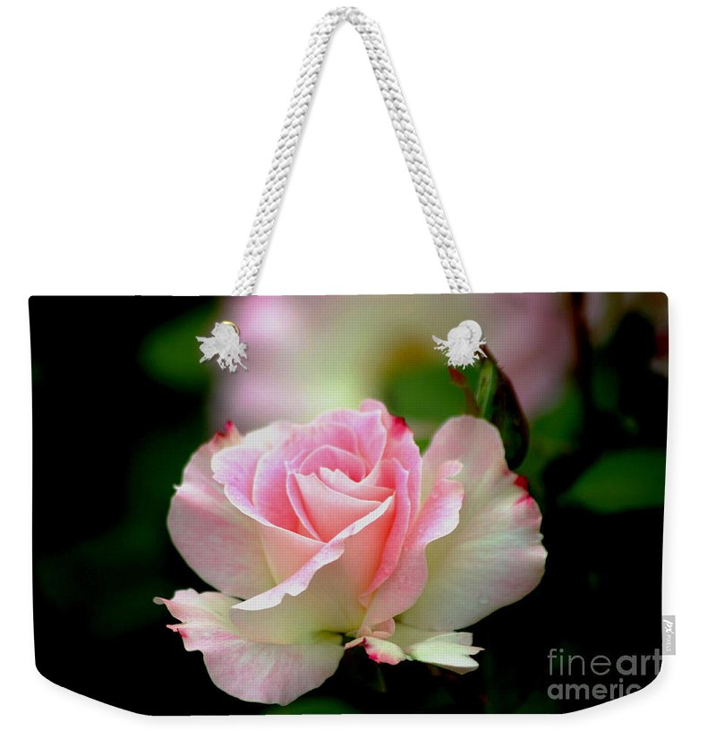 Roses Weekender Tote Bag featuring the photograph Dreamy by Living Color Photography Lorraine Lynch
