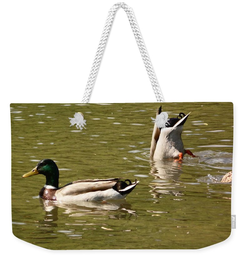 Ducks Weekender Tote Bag featuring the photograph Ducks by Karl Rose