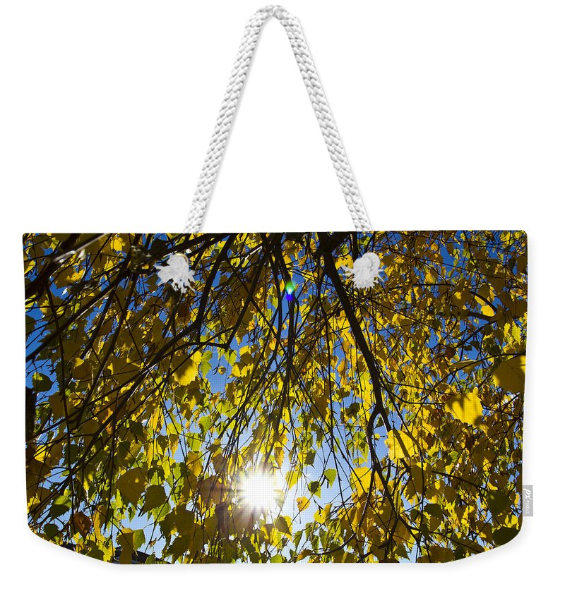 Autumn Weekender Tote Bag featuring the photograph Early Autumn by David Pyatt