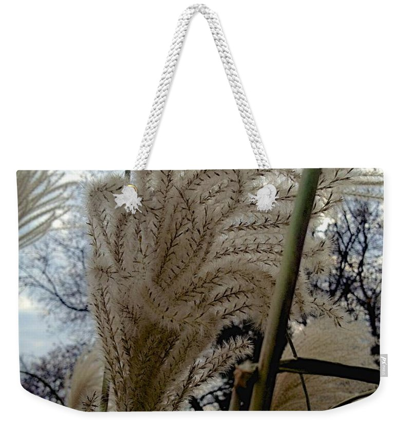 Fall Weekender Tote Bag featuring the photograph Etched by Joseph Yarbrough