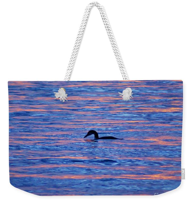 Bird Weekender Tote Bag featuring the photograph Evening Swim by Joe Geraci