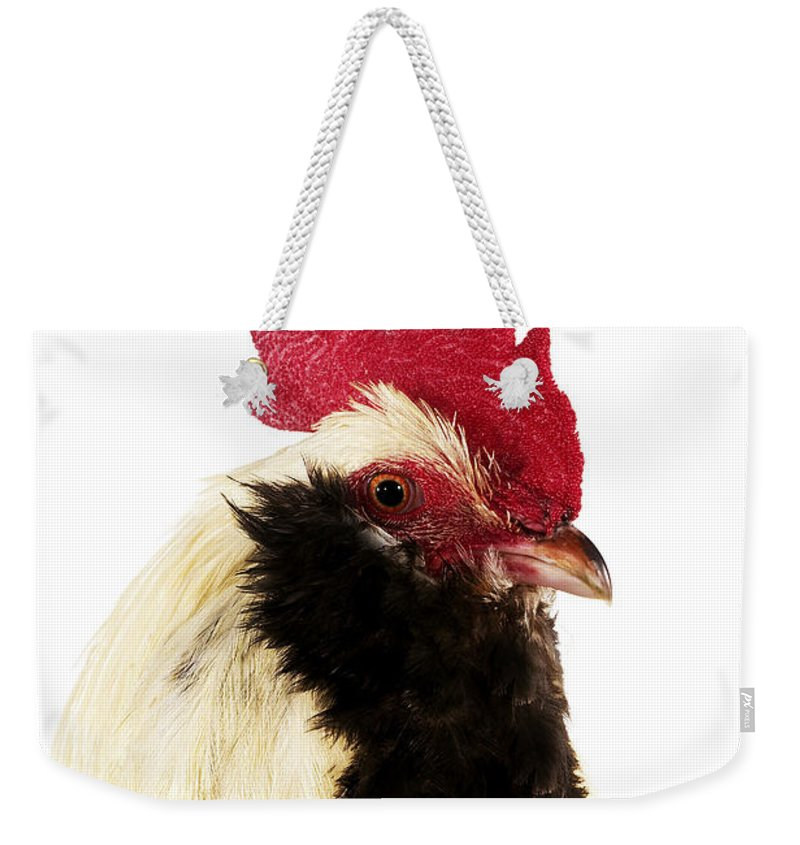 Adult Weekender Tote Bag featuring the photograph Faverolle by Gerard Lacz