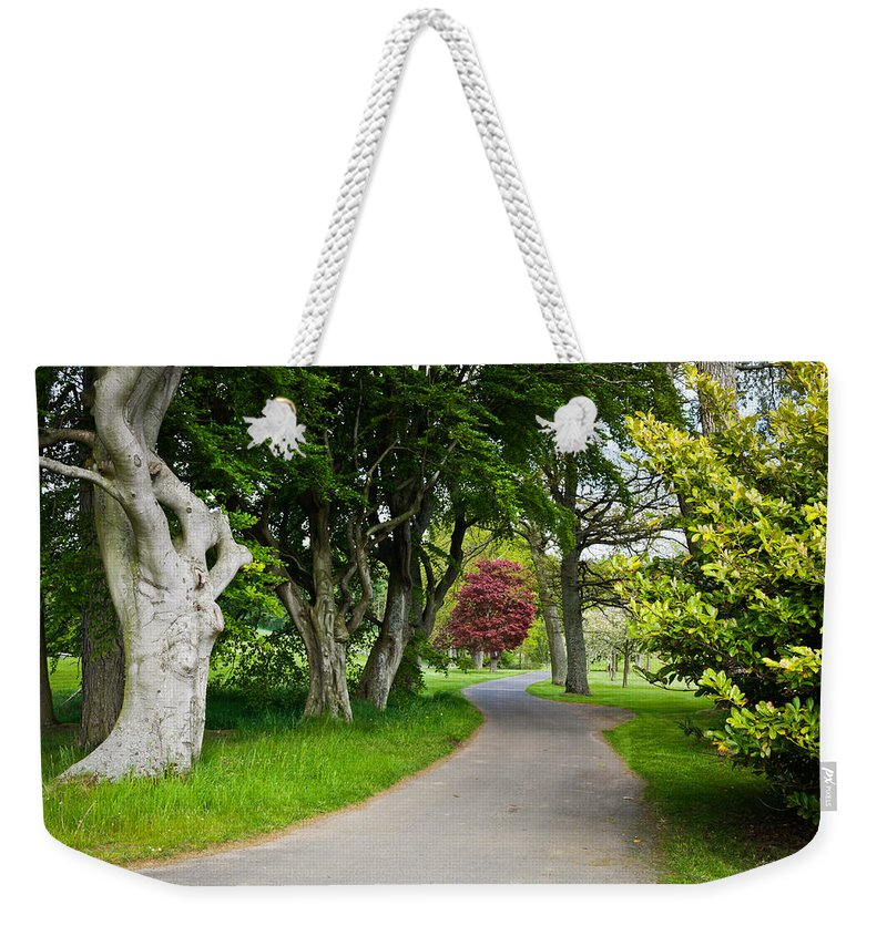 Background Weekender Tote Bag featuring the photograph Forest Track by Tom Gowanlock
