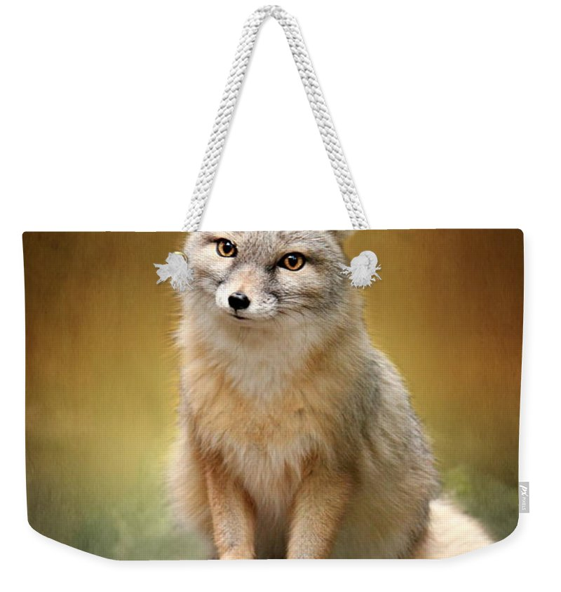Foxes Weekender Tote Bag featuring the mixed media Foxes by Heike Hultsch
