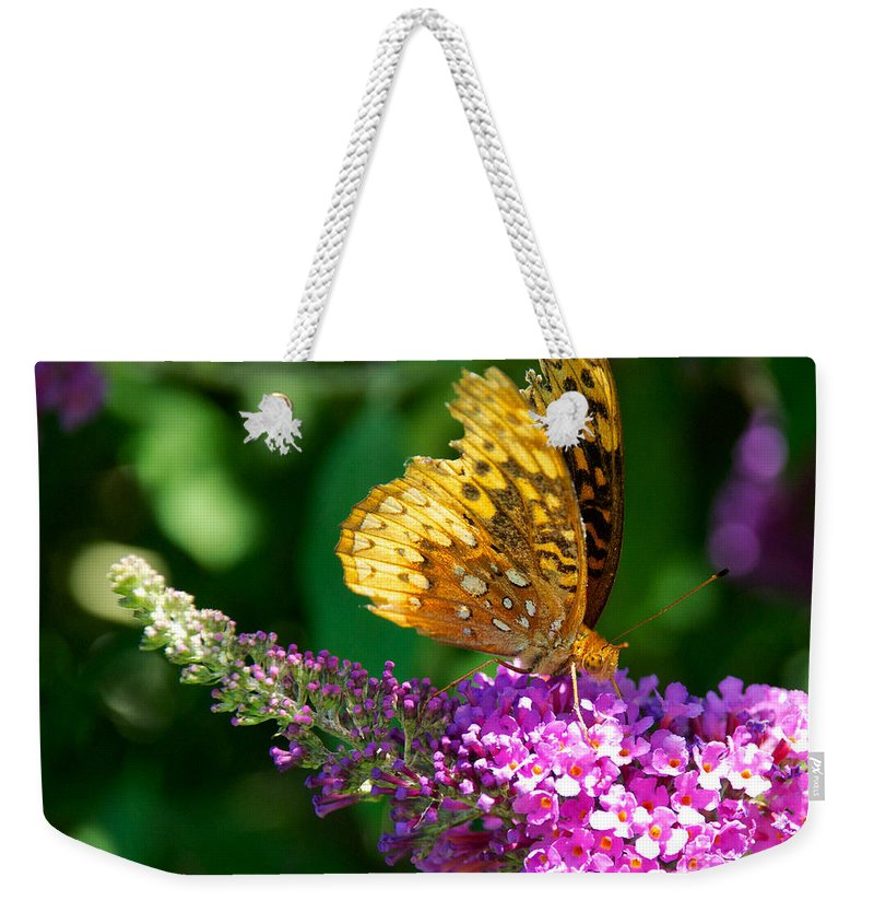 Bush Weekender Tote Bag featuring the photograph Fritillary Butterfly by Mark Dodd