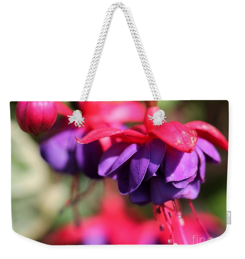 Mccombie Weekender Tote Bag featuring the photograph Fuchsia Named Dark Eyes by J McCombie