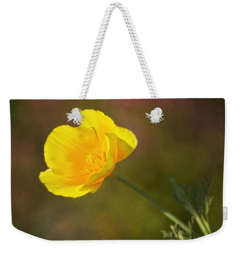 Flower Weekender Tote Bag featuring the photograph Golden by Claudia Kuhn
