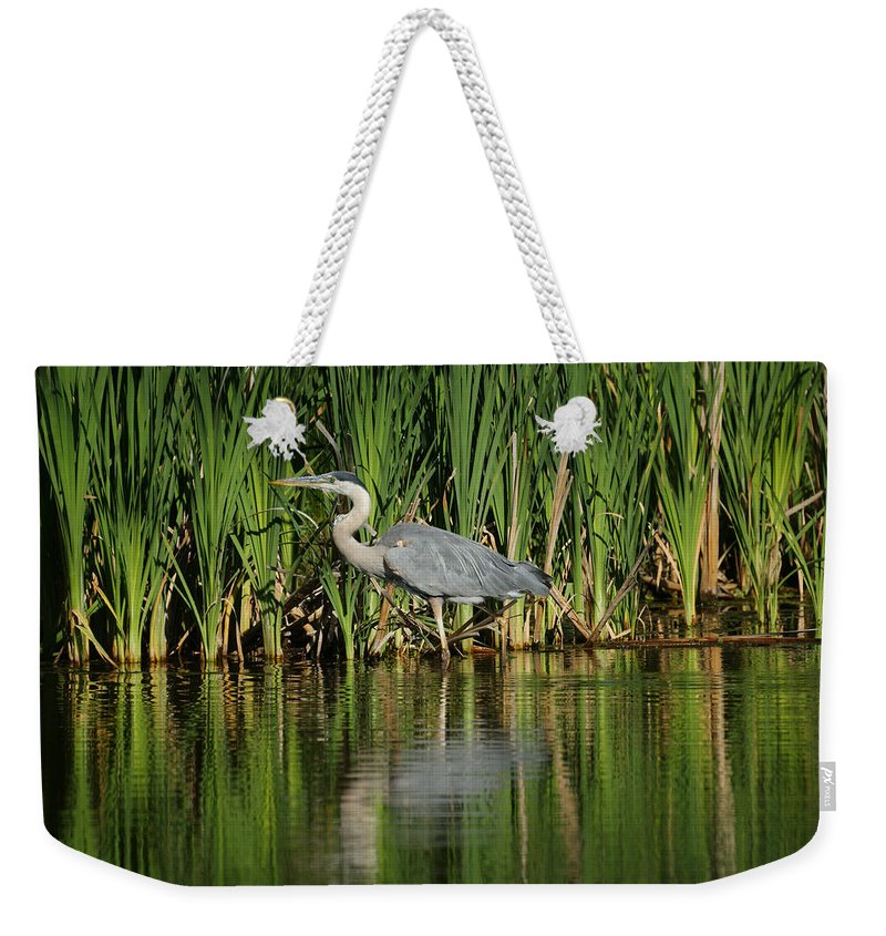 Animals Weekender Tote Bag featuring the photograph Great Blue Heron by Ernie Echols