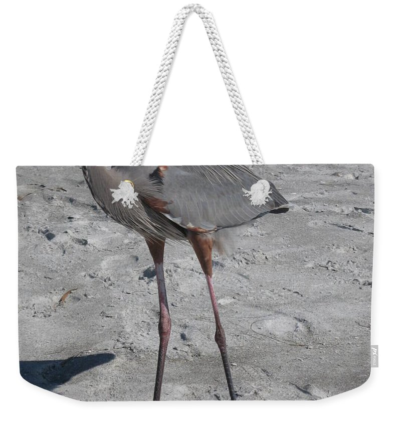 Heron Weekender Tote Bag featuring the photograph Great Blue Heron On The Beach by Christiane Schulze Art And Photography