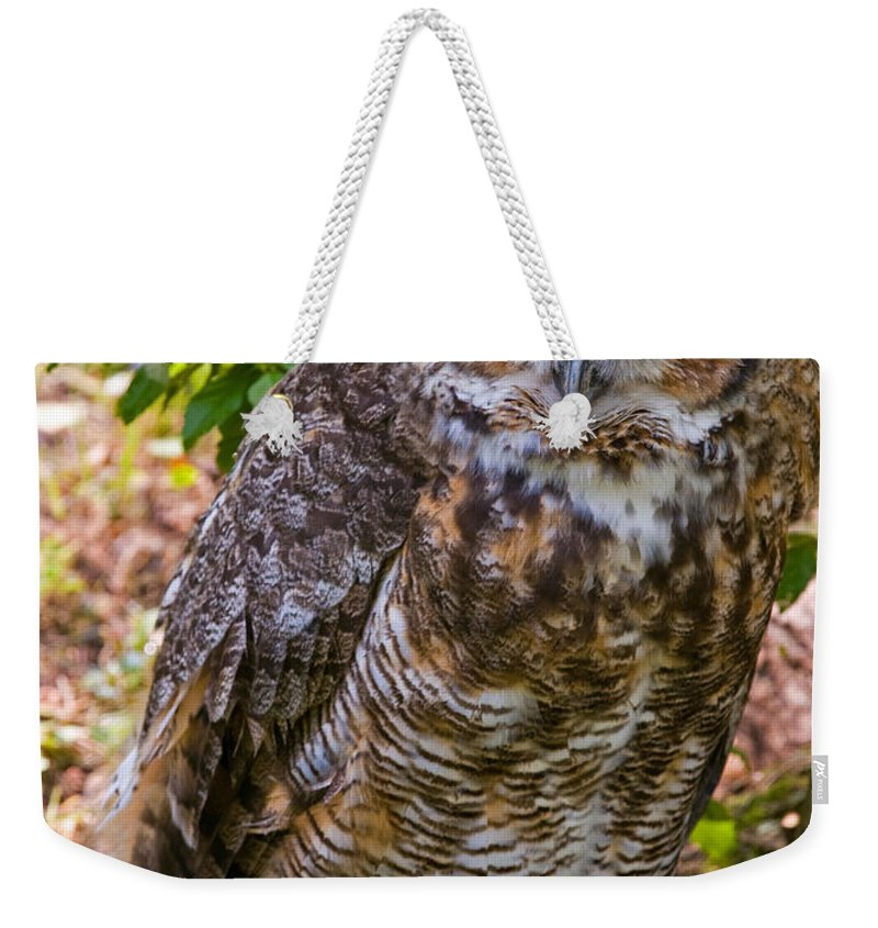Animal Weekender Tote Bag featuring the photograph Great Horned Owl by Millard H. Sharp