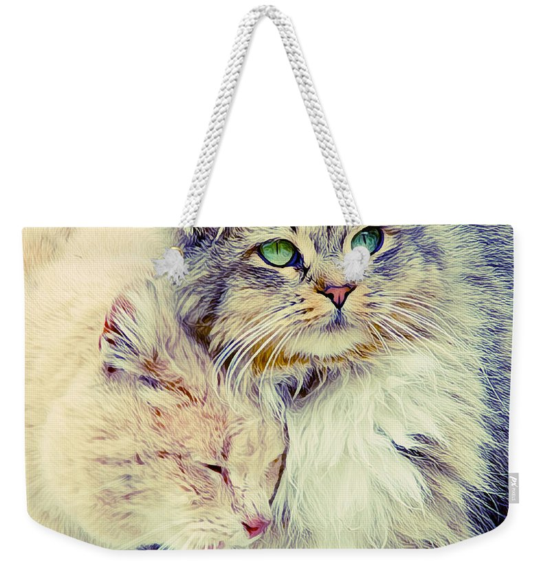 Cats Weekender Tote Bag featuring the photograph Gutter Kitties Seven by Alice Gipson