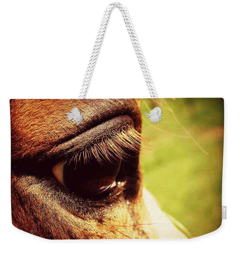 Horse Weekender Tote Bag featuring the photograph Horse Eye by Cassie Peters