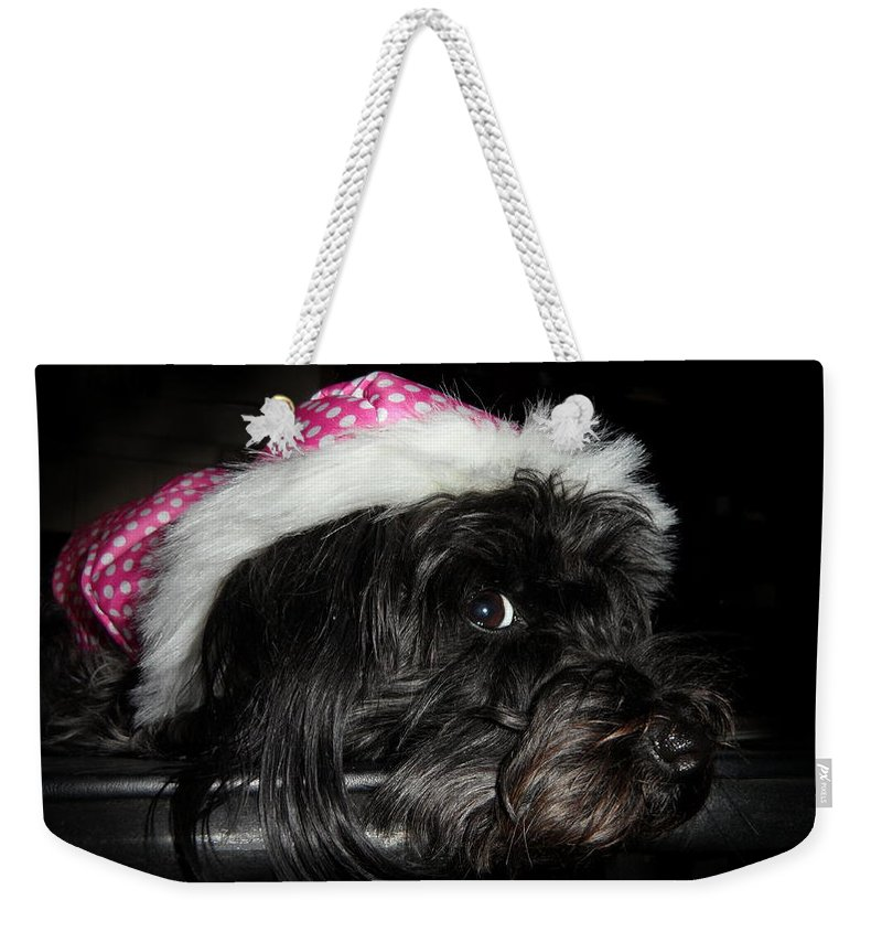 Dog Weekender Tote Bag featuring the photograph I Feel Pretty by Kume Bryant