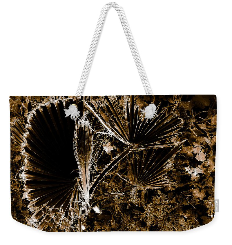 Abstract Weekender Tote Bag featuring the photograph Late Autumn Evening by Fei A