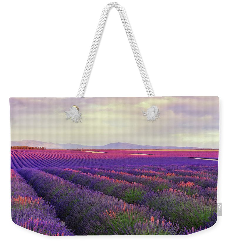 Dawn Weekender Tote Bag featuring the photograph Lavender Field At Dusk by Mammuth