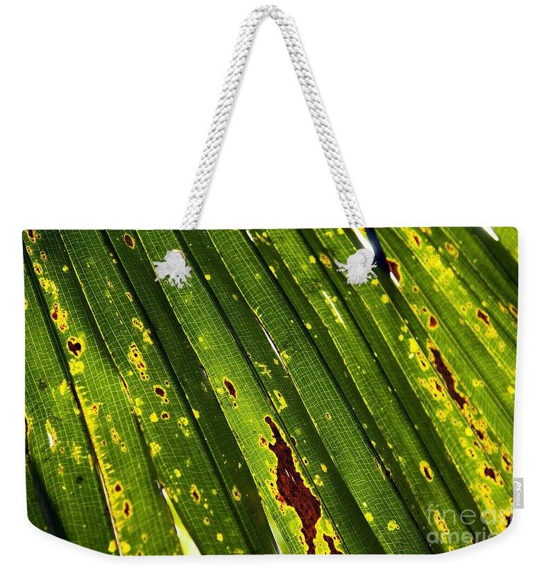 Abstract Weekender Tote Bag featuring the photograph Leaves Background 1 by Tim Hester