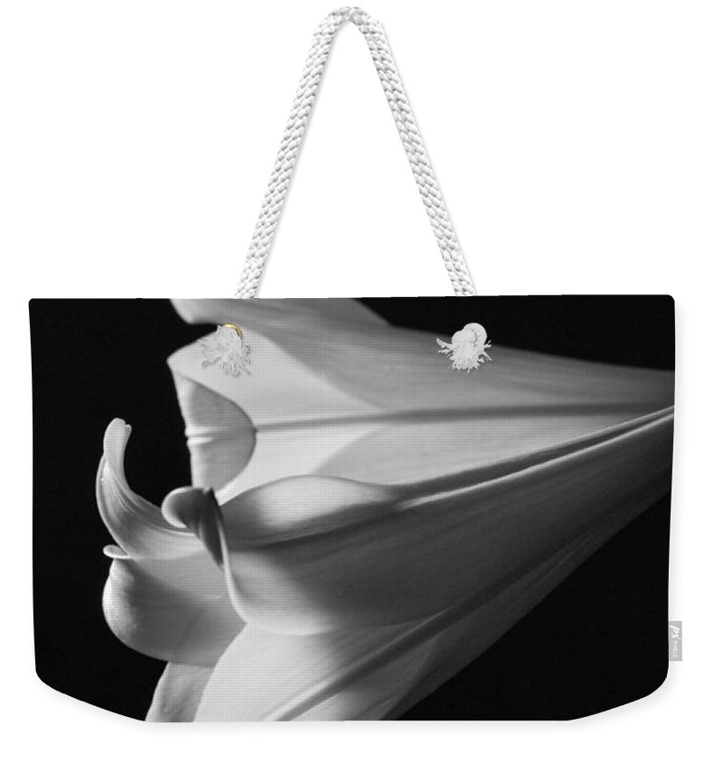 Blue Muse Fine Art Weekender Tote Bag featuring the photograph Lily 1 by Blue Muse Fine Art