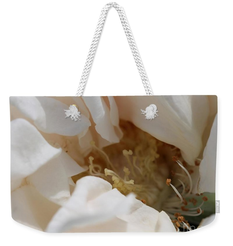 Mccombie Weekender Tote Bag featuring the photograph Long-stemmed White Rose by J McCombie