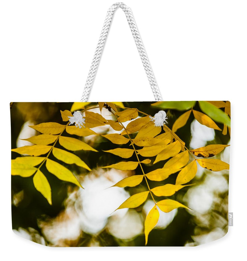 2014 Weekender Tote Bag featuring the photograph Look Up by Melinda Ledsome
