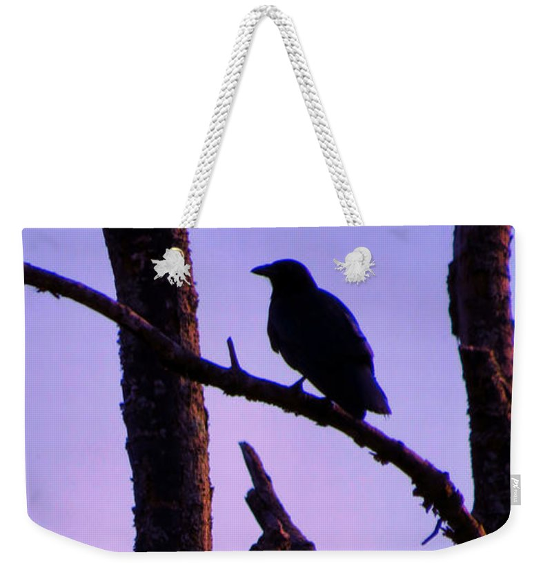 Bird Weekender Tote Bag featuring the photograph Magic Is The Night by Art Dingo
