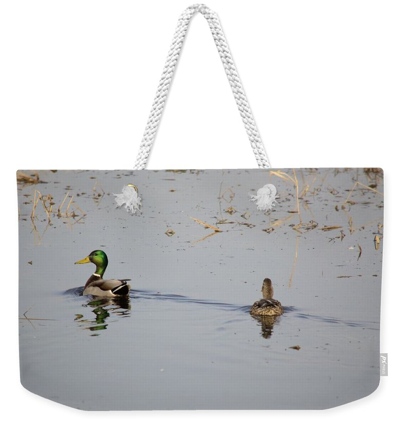 Mallard Weekender Tote Bag featuring the photograph Mallards by Bonfire Photography