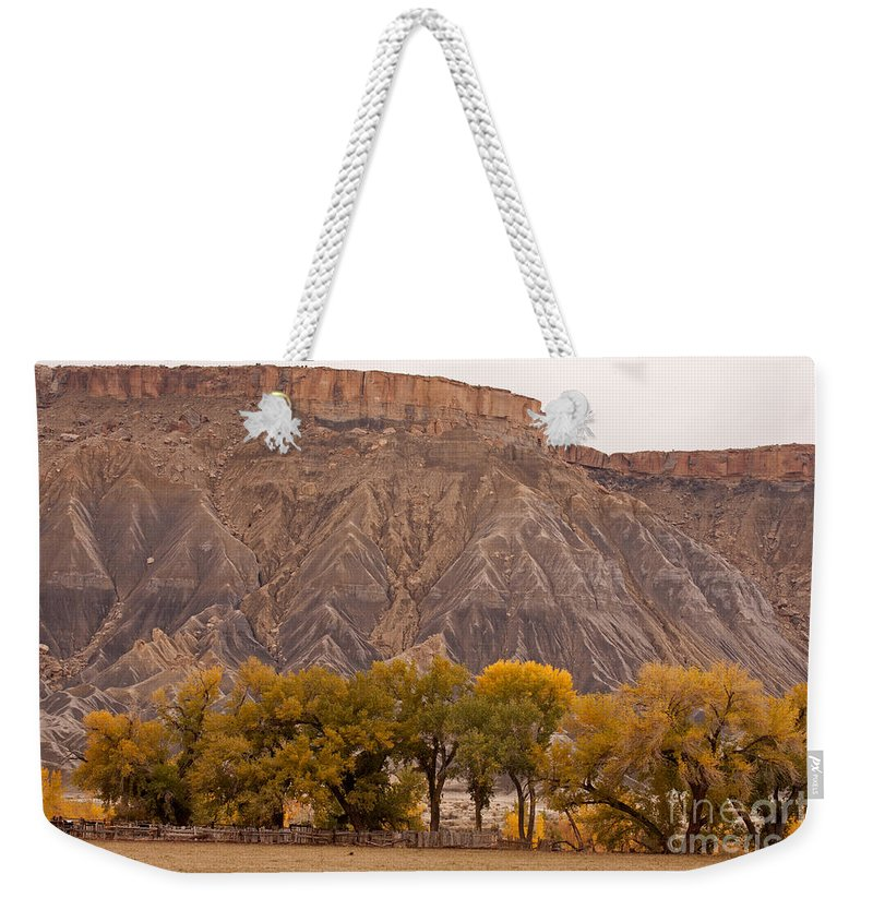 Afternoon Weekender Tote Bag featuring the photograph Mesa by Fred Stearns